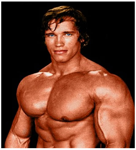 Arnold schwarzenegger auditions free arnold schwarzenegger voltagebd Image collections