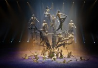 Auditions for Le Reve Las Vegas show nationwide - gymnasts, acrobats and performers