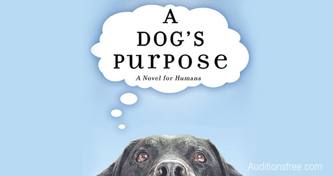 "Dreamworks ""A Dog's Purpose"" open casting call"
