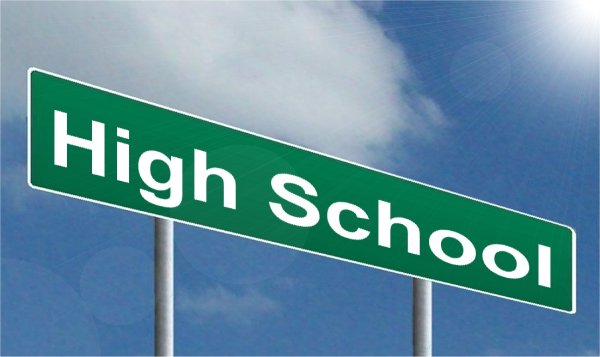 How to Survive High School web series