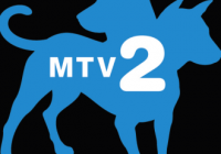 MTV2 Cast call in L.A.