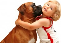 Casting pet lover for a reality show