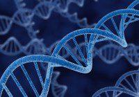 DNA Casting