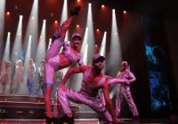 Mein Schiff dance auditions in New York