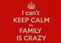 crazy family show