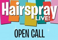 Hairspray Live open call