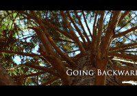 Going Backwards movie