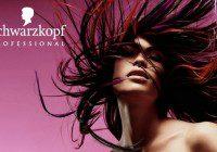 Hair models in Germany
