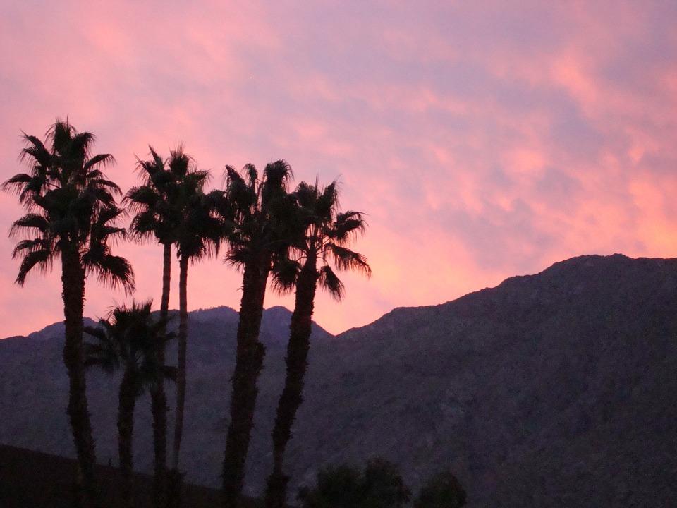 Palm Springs casting call