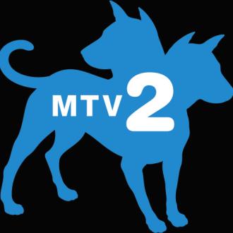 MTV2 Cast call in L.A.