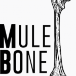 "Auditions in San Diego, African American Male Actors Ages 18-70 for Theater Project ""Mule Bone"""